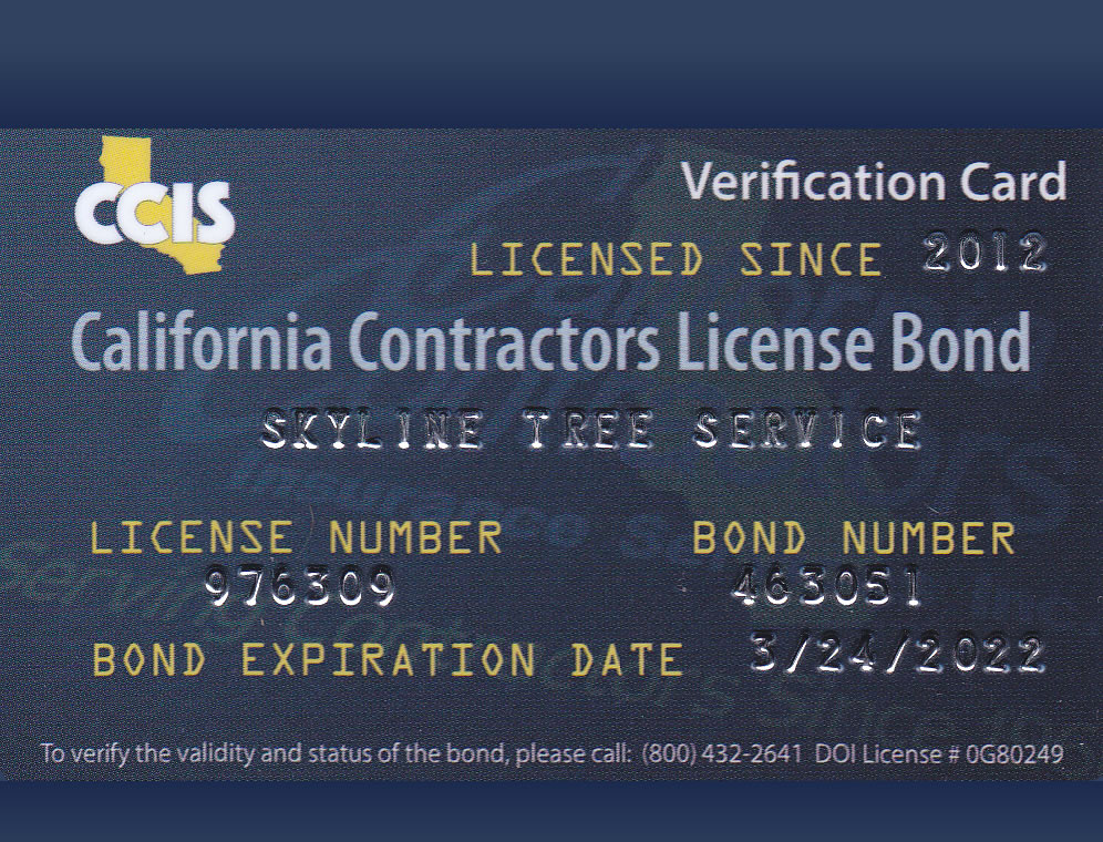 California Contractors License Bond