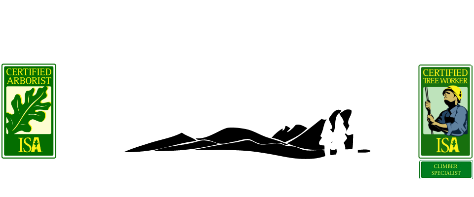 Skyline Tree Service Mammoth Lakes and Bishop CA
