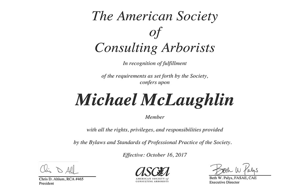 American Society of Consulting Arborists